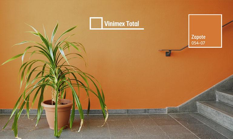 Zapote un color que estimula la convivencia - Color tierra claro ...